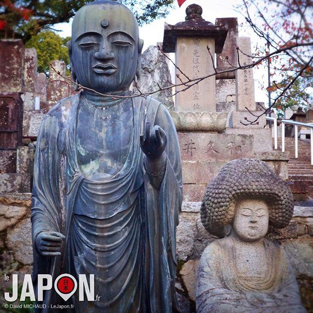 Les Cool Jizo de #Kyoto ! Merci @geoffsuteki pour la découverte ;)
