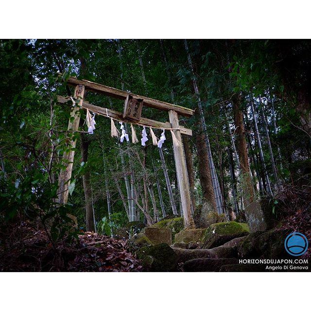 Une porte d'entrée vers les Kami Shintô  au cœur de la montagne