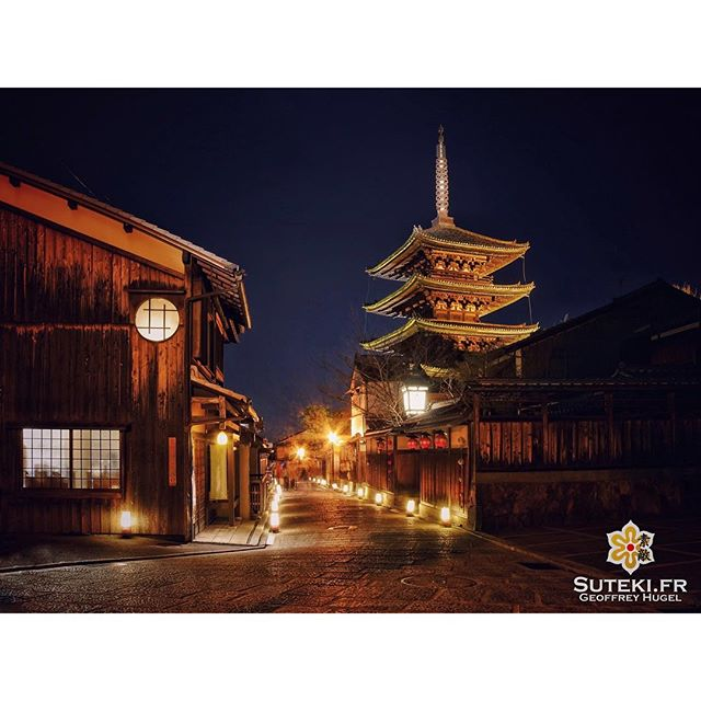 Kyoto Safari Night ! #japon #kyoto
