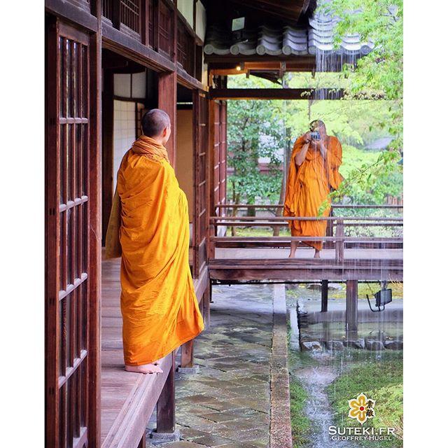 Les moines tibétains en vacances à Kyoto ! #japon #kyoto #kyotosafari