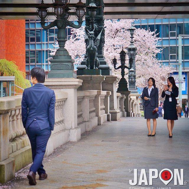 Il pleut des cordes aujourd'hui… Donc c'est déjà avec nostalgie que l'on regarde les photos de Sakura…
