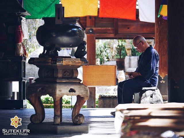 Un peu de lecture au calme #japon #kyoto #kyotosafari