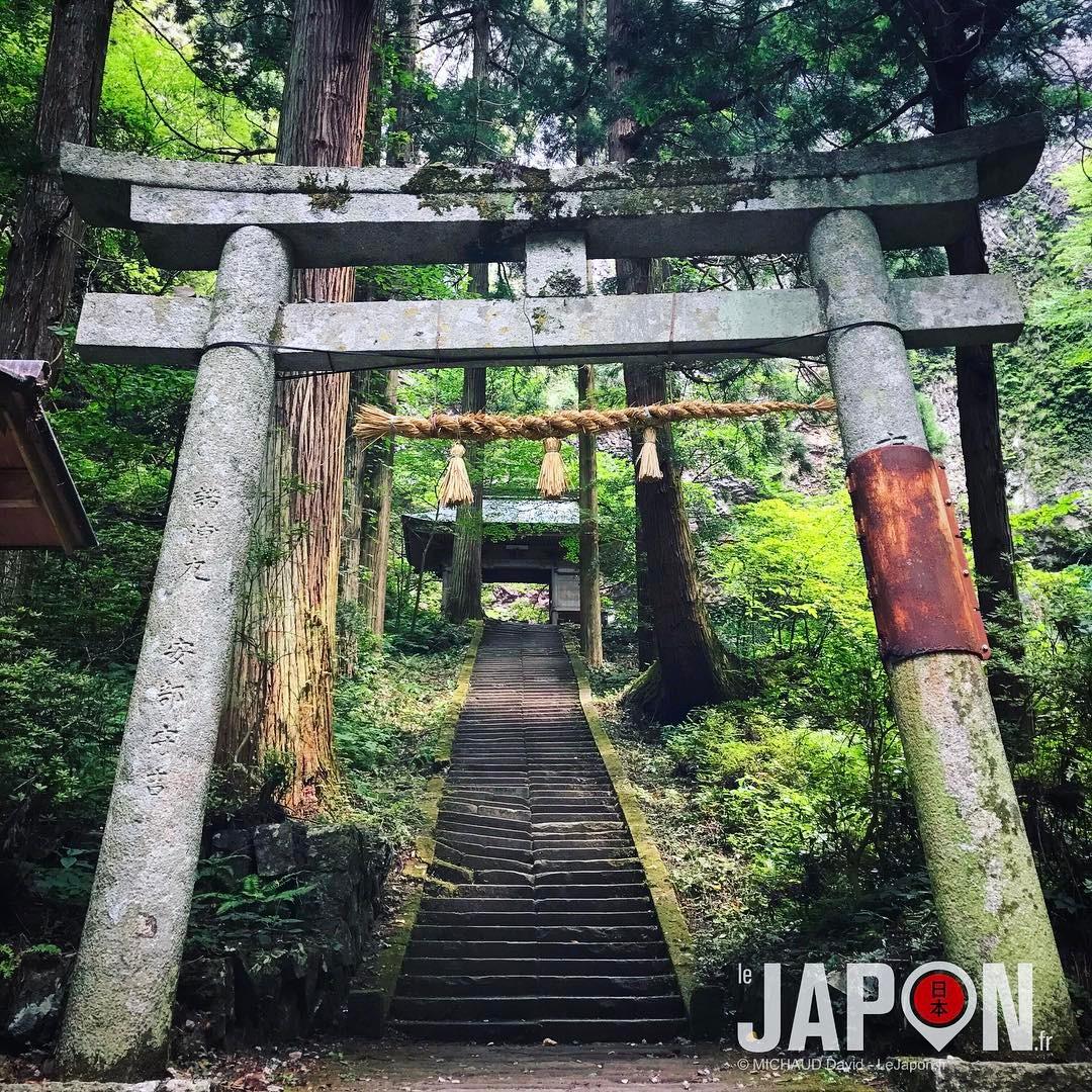 L'entrée du sanctuaire Dangyo ⛩😀 #SaninAdventure