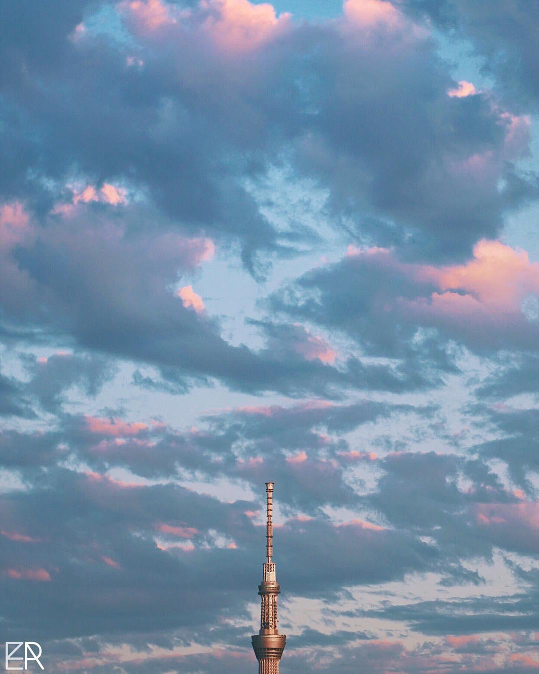 Tokyo Sky & Tree