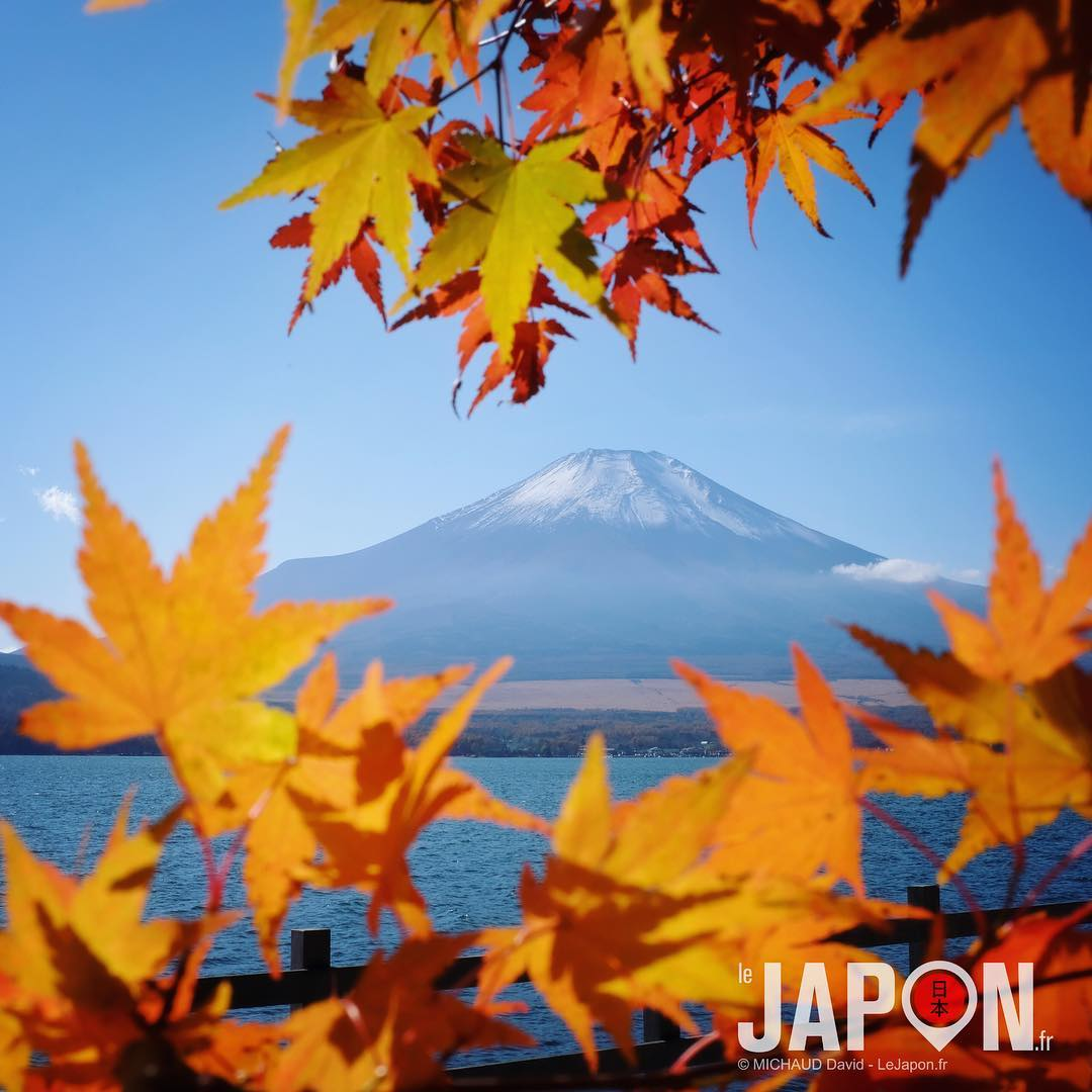 Rando autour du lac Yamanakako avec en guide @3776d et en guest star @manikenoke 😉🗻 #Yamanakako #yamayo #Japon
