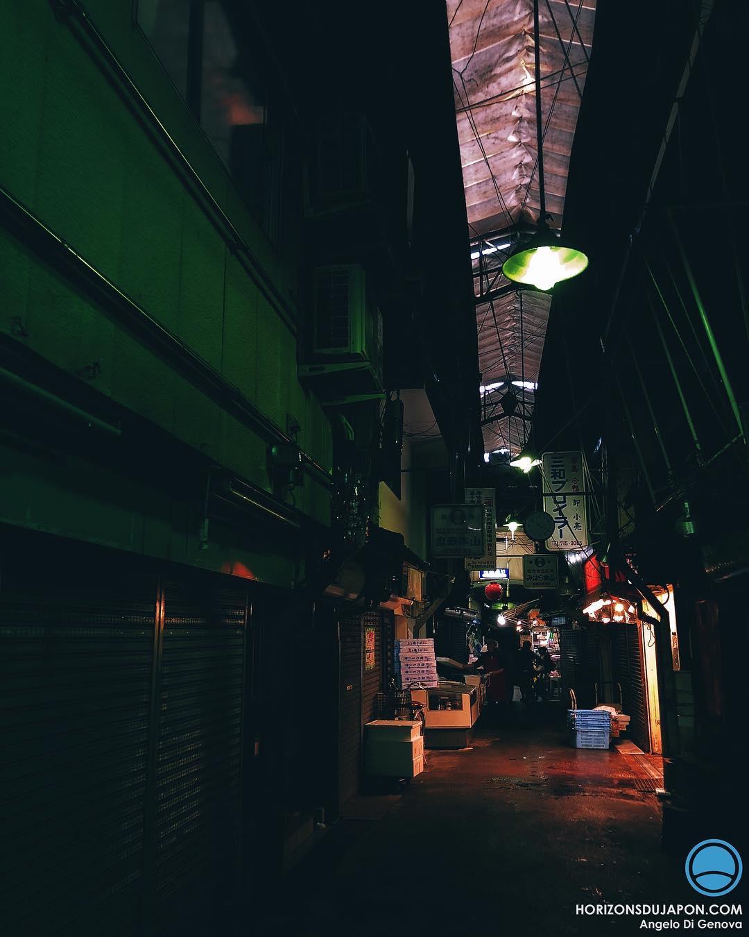 L'obscurité cache souvent un Japon étonnant  #osakasafari #japonsafari #iphone8plus