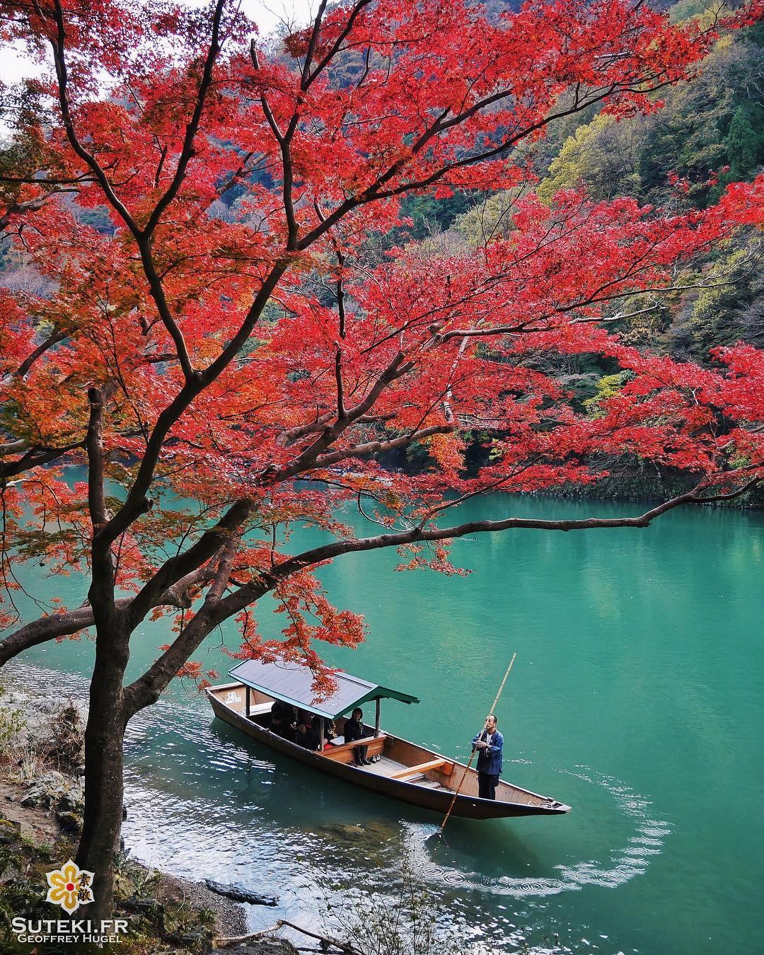 Contemplation des couleurs #japon #kyoto #kyotosafari