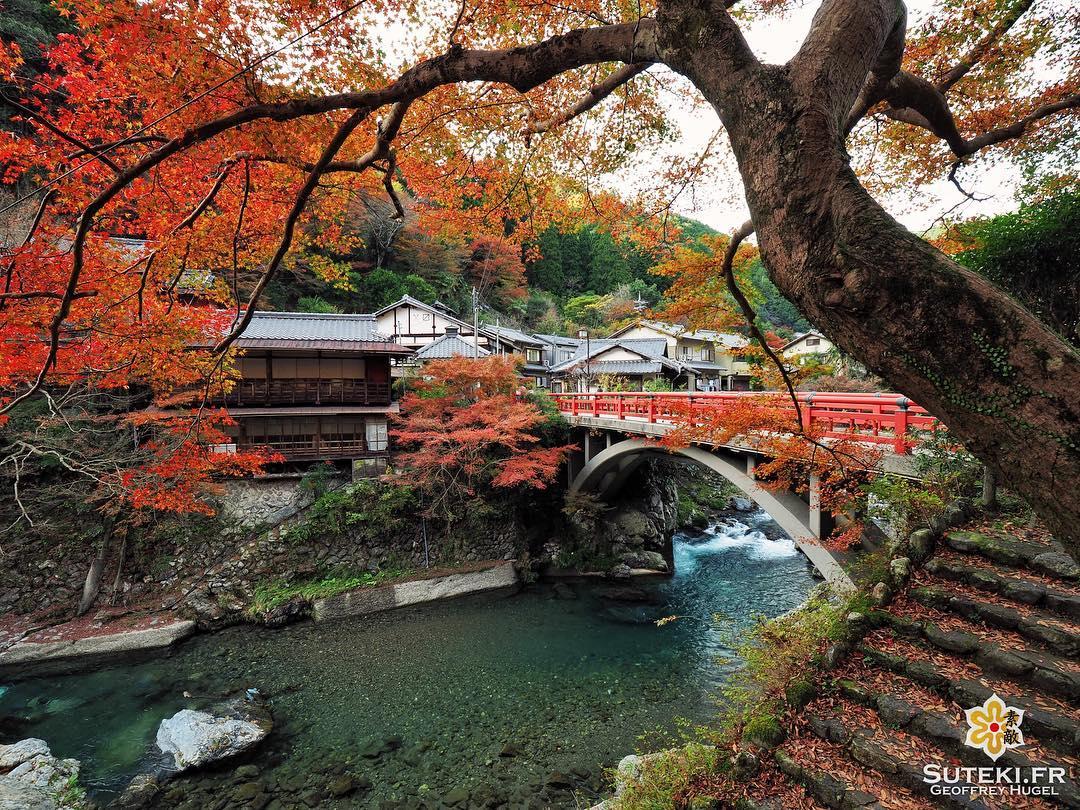 Koyo de campagne #japon #kyoto