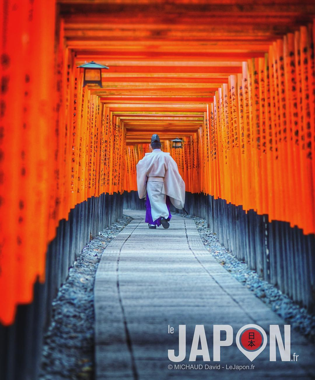 Un matin au sanctuaire Fushimi Inari ⛩⛩⛩🙏🏻✨ #Japon #KyotoSafari #Inari #Kyoto