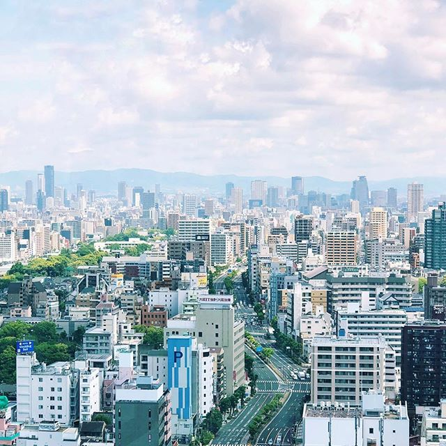 The City #osakasafari #japonsafari