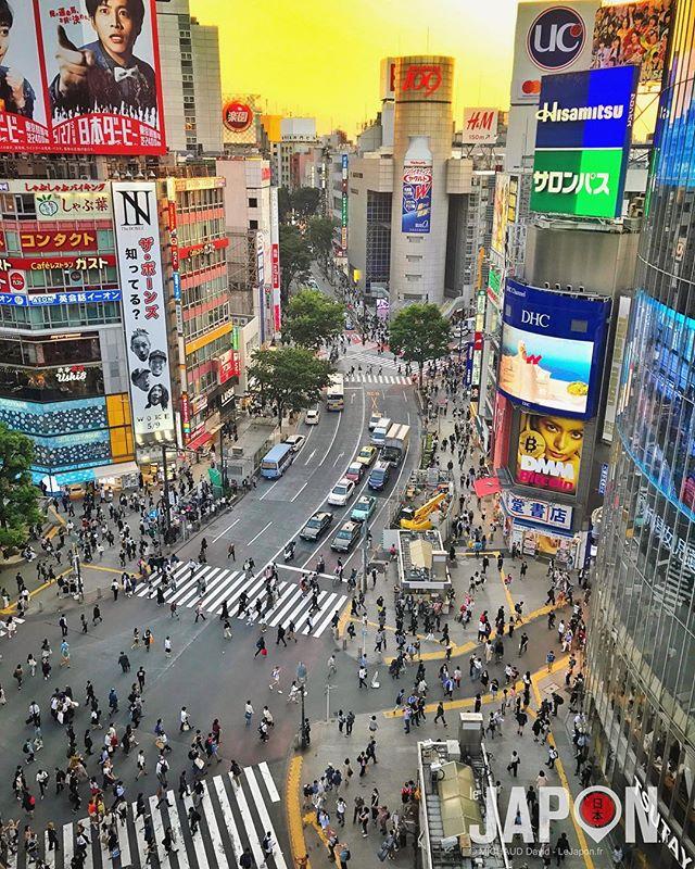Shibuya quand arrive le soir brûlant de l'été ! 😱🗼🌇🔥🔥🔥