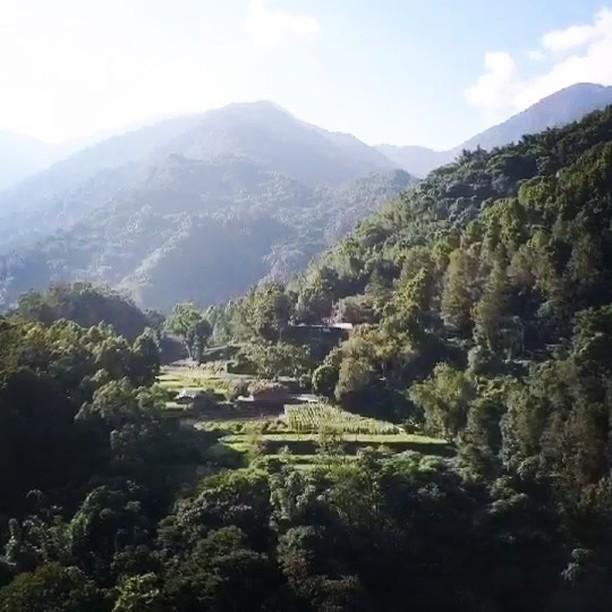 Incroyable expérience et rencontre dans la jungle de Taïwan grâce à @hoxiong et son offre #taiwansafari 🇹🇼