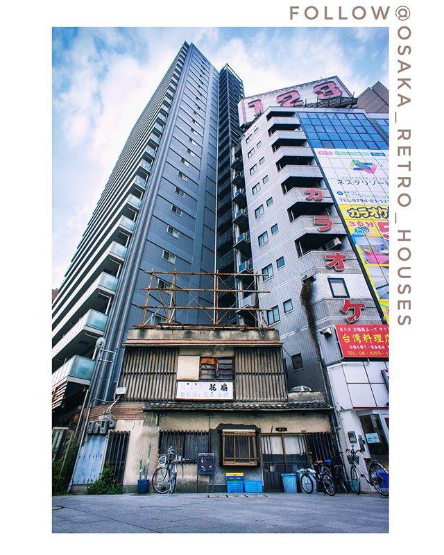 Si vous aimez les vieilles maisons japonaises et le Japon rétro vous pouvez suivre mon deuxième compte Instagram ici : @osaka_retro_houses ! #osakasafari #japonsafari #ilovejapan #RetroHousesOsaka #昭和レトロ #昭和 #町並み #ノスタルジー #japanese_retro