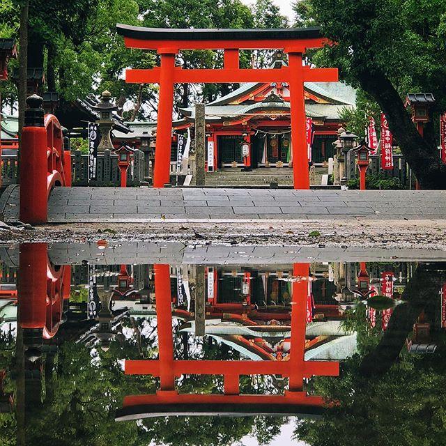 Après la pluie, il y a deux fois plus de Torii  #osakasafari #japonsafari #discoverosaka