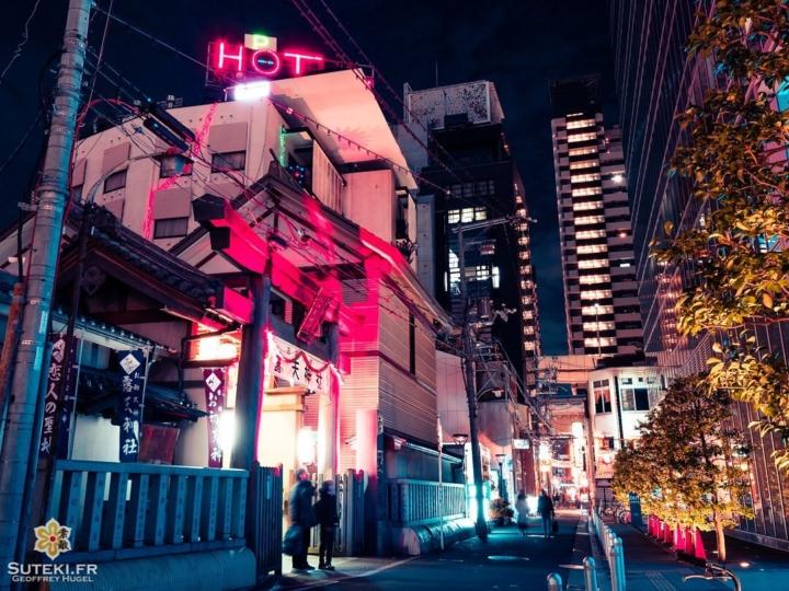 Ce contraste des genres est-il l'un des éléments qui caractérise le plus le Japon ? Pensez-vous qu'il soit acceptable de pouvoir noyer de la sorte les temples et sanctuaires au milieu des constructions ?  Là on a vraiment un peu de tout, un sanctuaire shinto, un hôtel, des immeubles d'appartements, des magasins au fond, une structure plus moderne à droite… sans oublier les poteaux électriques et les cônes en plastique sinon le tableau ne serait pas complet !  Mais quand la nuit tombe, les différents éclairages nous donnent une scène assez cool encore une fois ! Le tout avec un petit traitement Blade Runner style pour faire suite aux dernières photos ! . . . . . #osaka #osakajapan #osakatravel #discoverjapan #explorejapan #exploreosaka #everydayjapan #nightphoto #nightscene #nightscape #torii #bladerunner #olympuscamera #olympusphotography #getolympus #olympusinspired #大阪 #大阪旅行 #大阪観光 #大阪カメラ部