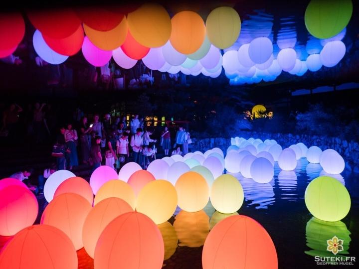 On termine cette petite série sur les superbes illuminations de @teamlab avec la petite rivière où étaient disposés des dizaines d'œufs qui changeaient de couleurs quand les gens les touchaient.  Il m'a fallu pas mal de clichés pour capturer cet aspect multicolore durant les phases de transition !  Et une fois de plus, le reflet en l'air est 100% de ma création, et 0% photoshopé :) Je crois que c'est ma photo favorite de la série (avec les 2 précédentes donc) ! Et vous, laquelle des 3 avez-vous préféré ? . . . . . #nophotoshop #kyoto #kyotogram #japaneseshrine #teamlab #night_shooterz #olympusinspired #olympuscamera #reflection_shots #explorejapan #beautifulkyoto #ilovekyoto #visitjapanjp #discoverjapan #discoverkyoto #そうだ京都行こう #京都 #京都旅 #京都好き #日本を休もう