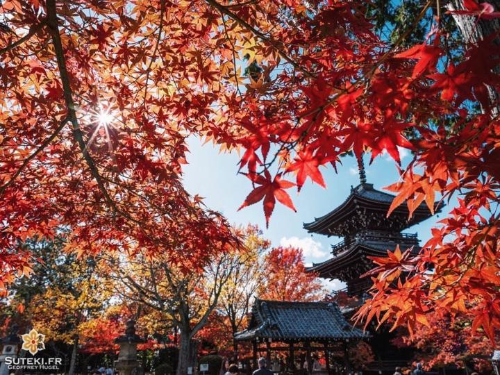 Pagode à Kyoto