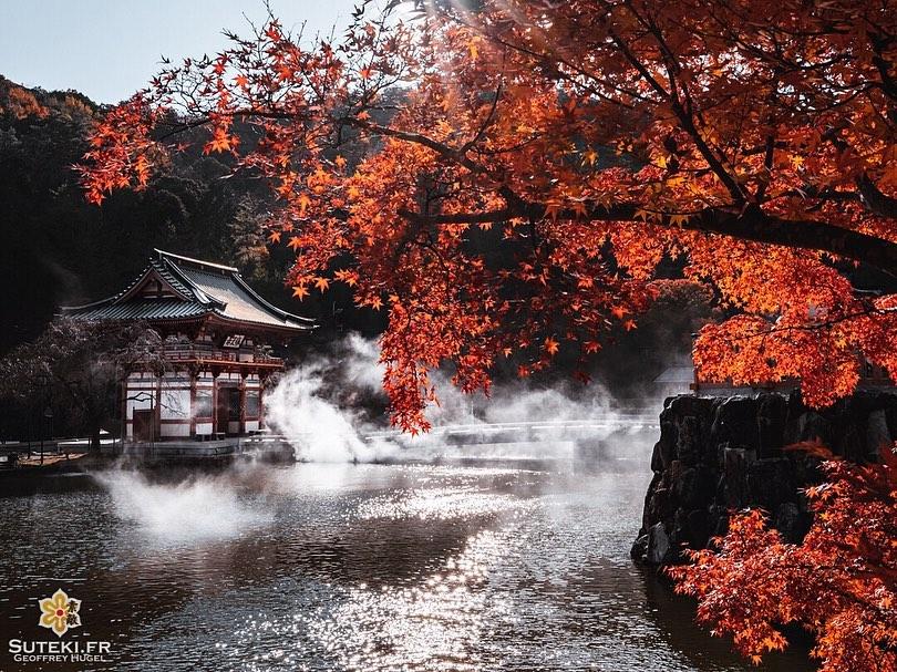 temple en automne à Osaka