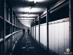 Un simple couloir en apparence, mais avec une ambiance assez cool à la nuit tombée !  Du bonus qui fait plaisir sur le chemin de ce que j'étais allé faire ce jour là ! . Abonnez-vous pour plus de photos du Japon => @sutekifr . #hellofrom Kobe 神戸 🇯🇵 #lovekobe #mysticvibes #moodyphotography #corridor #streetphotography #japanvibes #lr_moments #mysteriousways #discoverjapan #industrycity #fujifilm_xseries #kansai #moody_tones #visitjapan #discoverer #industrycity #lr_vista #TheWeekOnInstagram #CreateExplore #contrasts #everydayjapan #justanormalday